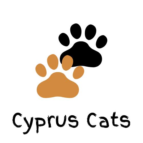 Cyprus Cats.com Limassol Cyprus